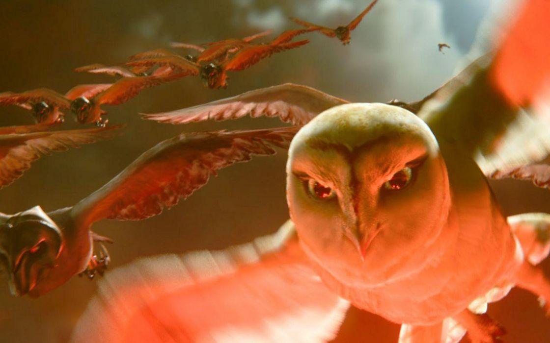 LEGEND GUARDIANS OWLS GAHOOLE animation fantasy adventure family cartoon hoole owl (5) wallpaper