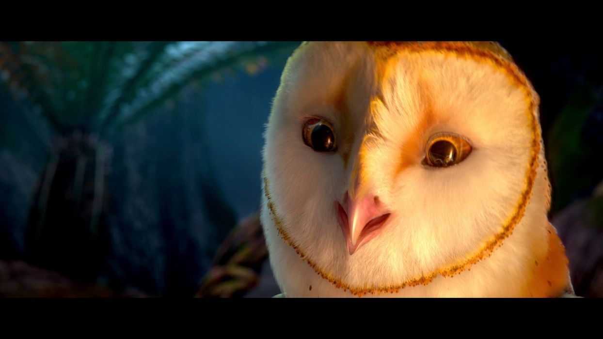 LEGEND GUARDIANS OWLS GAHOOLE animation fantasy adventure family cartoon hoole owl (17) wallpaper