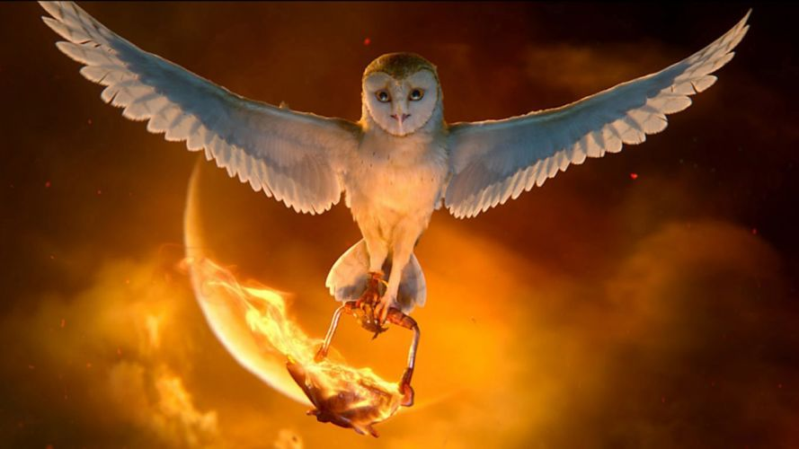 LEGEND GUARDIANS OWLS GAHOOLE animation fantasy adventure family cartoon hoole owl (25) wallpaper