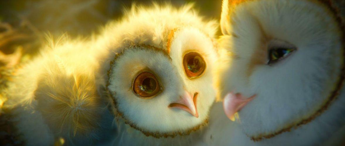 LEGEND GUARDIANS OWLS GAHOOLE animation fantasy adventure family cartoon hoole owl (23) wallpaper