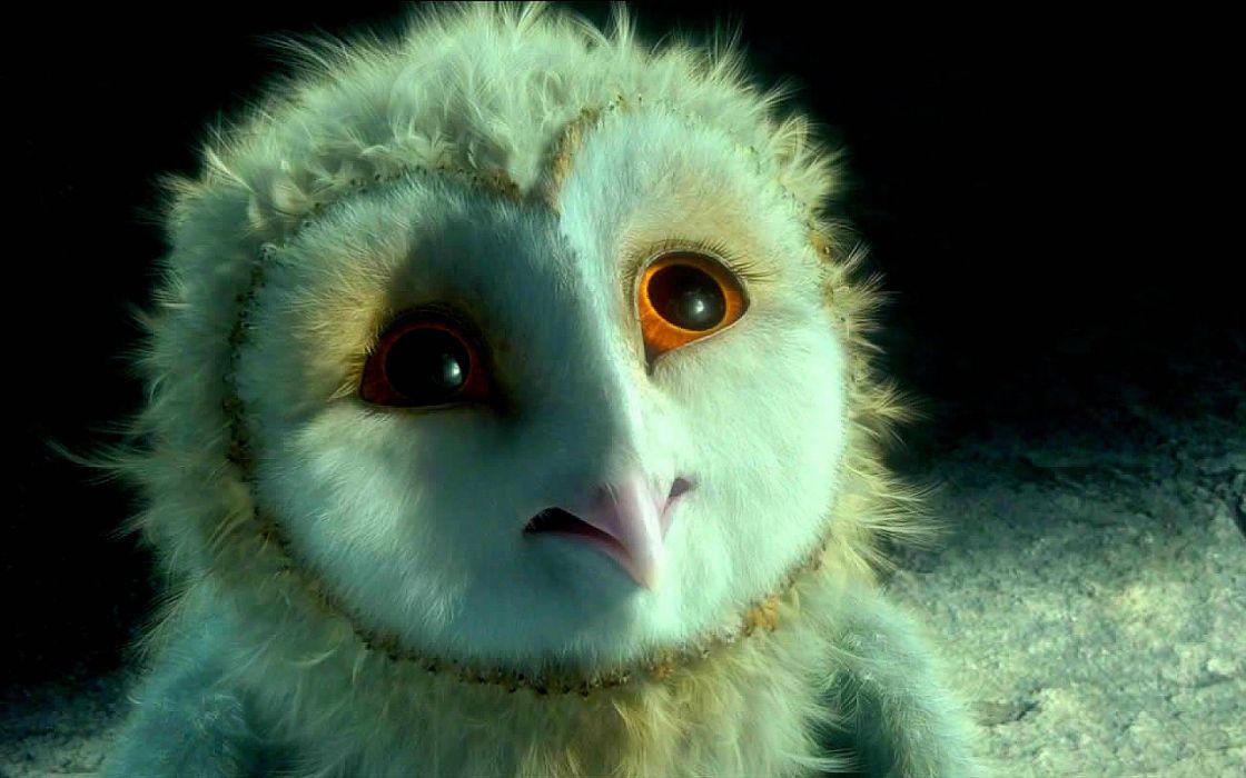 LEGEND GUARDIANS OWLS GAHOOLE animation fantasy adventure family cartoon hoole owl (39) wallpaper