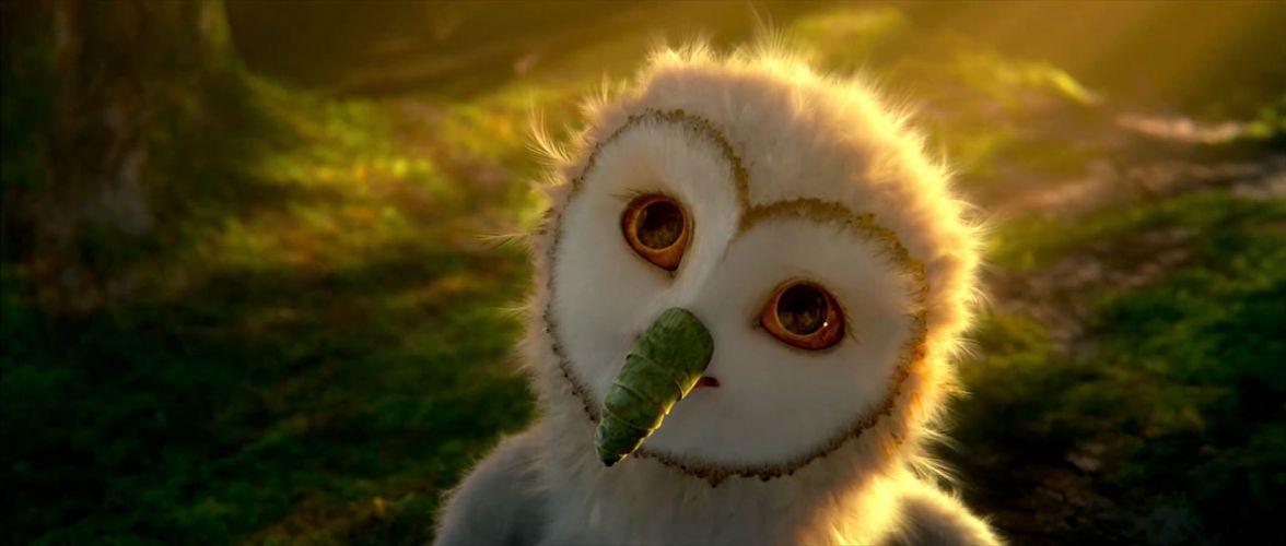 LEGEND GUARDIANS OWLS GAHOOLE animation fantasy adventure family cartoon hoole owl (48) wallpaper