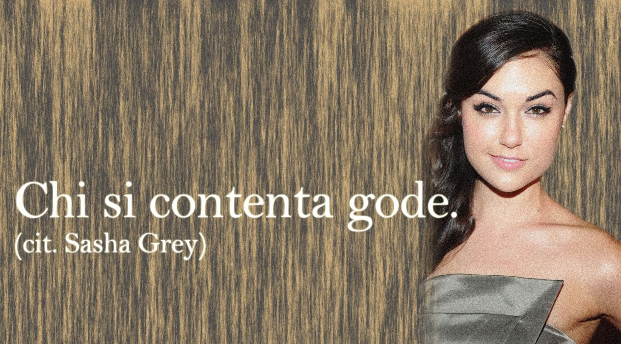 SASHA GREY adult model actress sexy babe (2) wallpaper