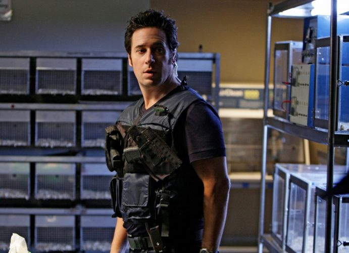 NUMB3RS crime drama mystery series thriller (10) wallpaper