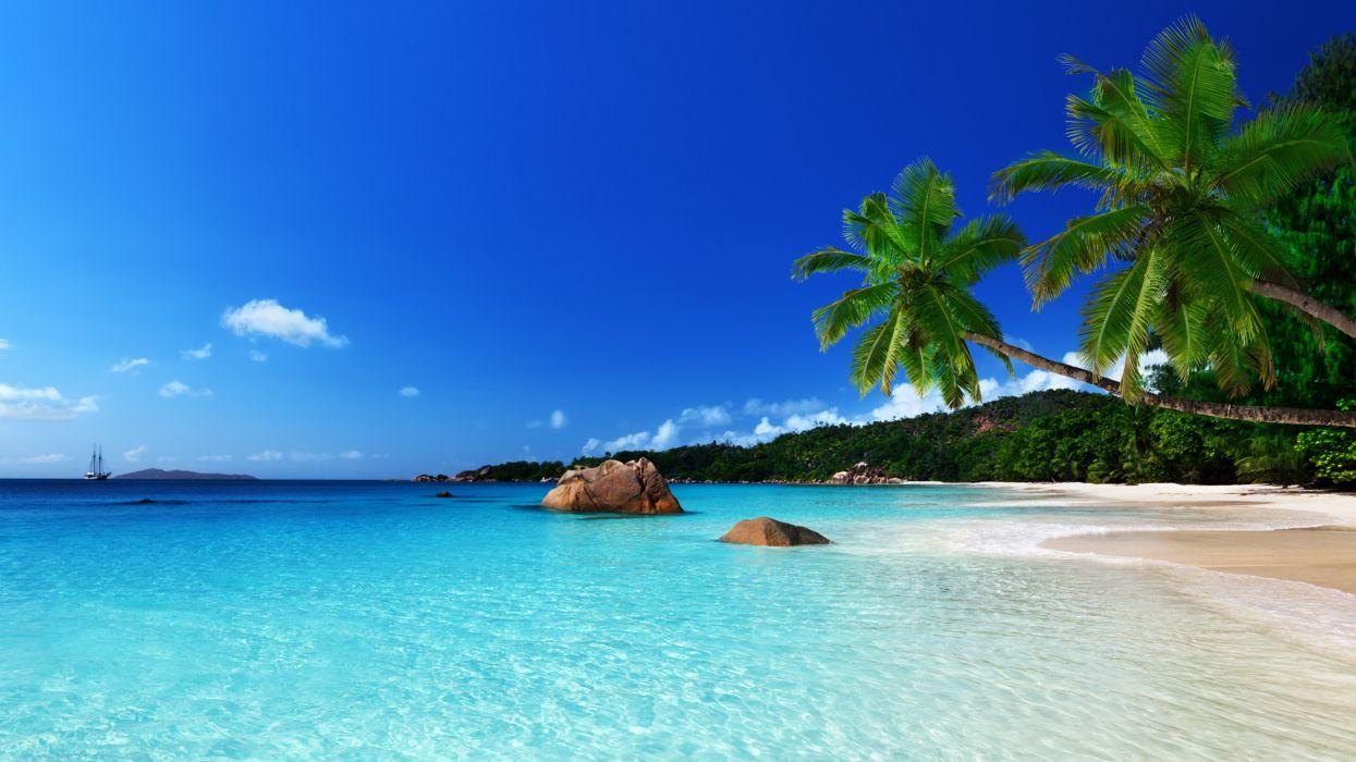 tropical paradise beach ocean sea palm summer coast wallpaper