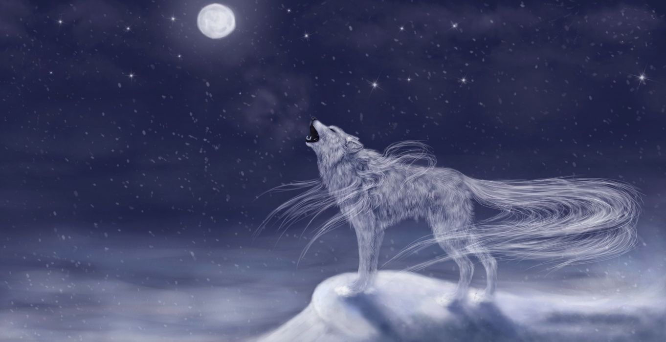 Magical Animals Wolves Moon Fantasy Wolf Dream Mood Wallpaper