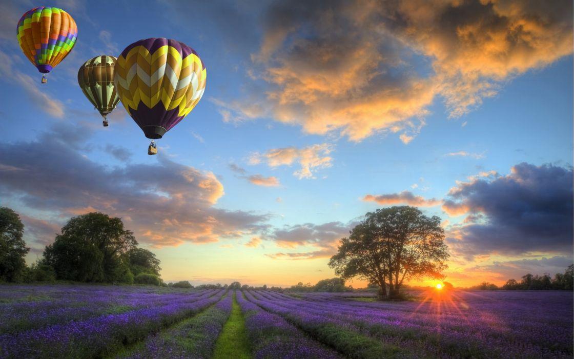balloon nature field flower sunset bokeh wallpaper