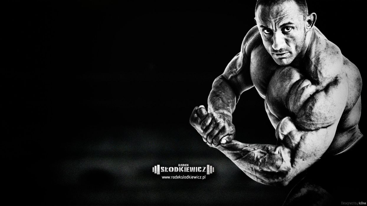 body-building fitness muscle muscles weight lifting Bodybuilding (21) wallpaper