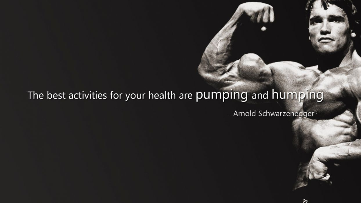 body-building fitness muscle muscles weight lifting Bodybuilding (24) wallpaper