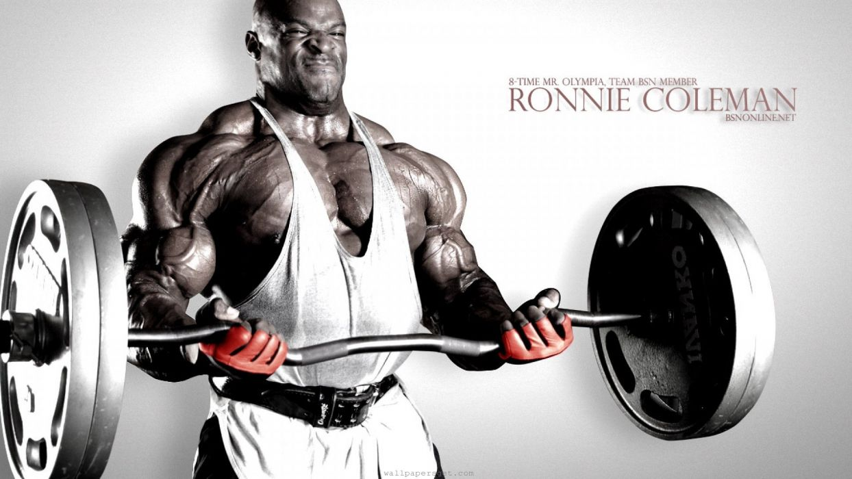 body-building fitness muscle muscles weight lifting Bodybuilding (42) wallpaper