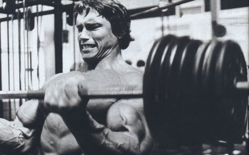 body-building fitness muscle muscles weight lifting Bodybuilding (52) wallpaper
