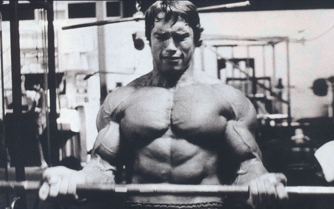 body-building fitness muscle muscles weight lifting Bodybuilding (51) wallpaper