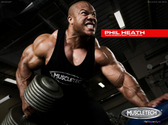 body-building fitness muscle muscles weight lifting Bodybuilding (66) wallpaper