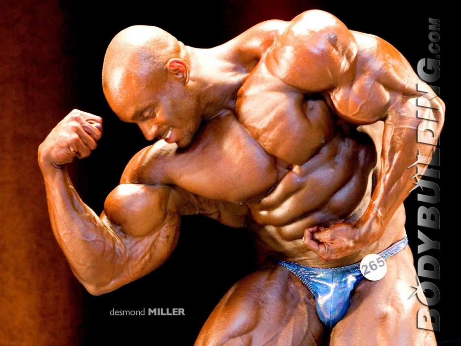 body-building fitness muscle muscles weight lifting Bodybuilding (63) wallpaper