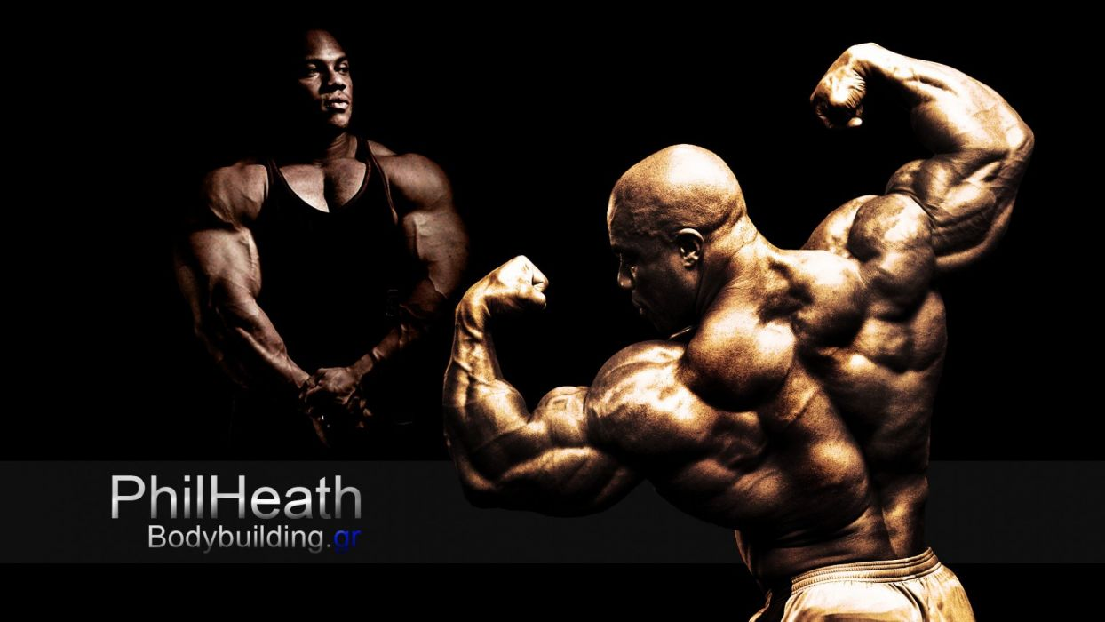 body-building fitness muscle muscles weight lifting Bodybuilding (70) wallpaper