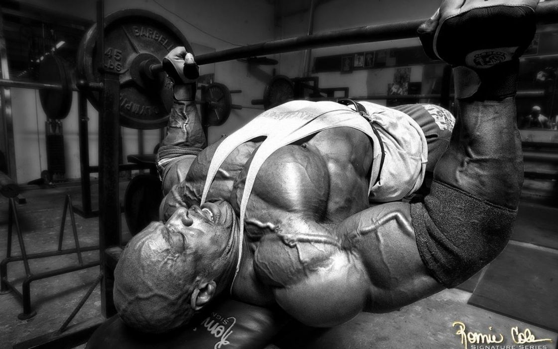 body-building fitness muscle muscles weight lifting Bodybuilding (72) wallpaper