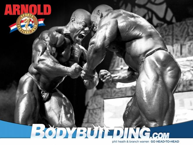 body-building fitness muscle muscles weight lifting Bodybuilding (76) wallpaper