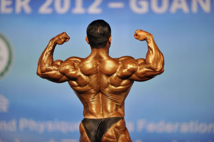 body-building fitness muscle muscles weight lifting Bodybuilding (78) wallpaper