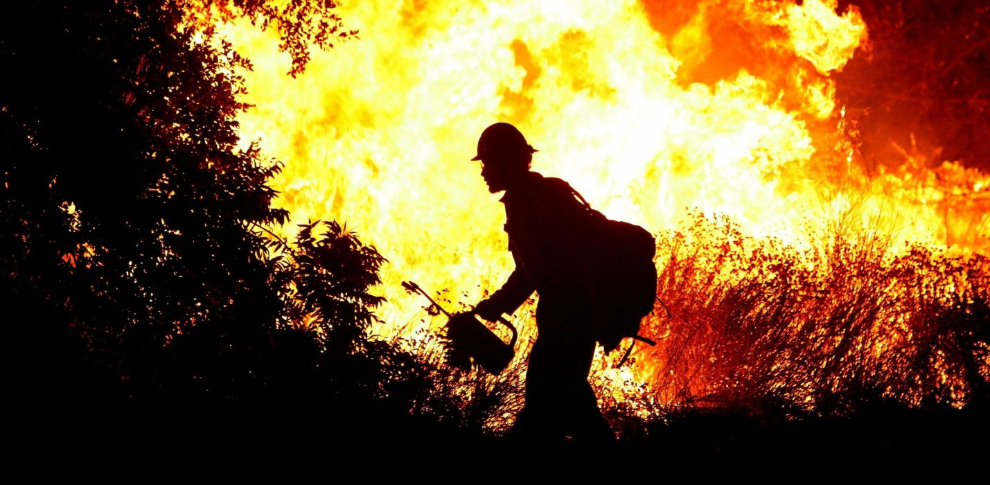 forest fire flames tree disaster apocalyptic (6) wallpaper