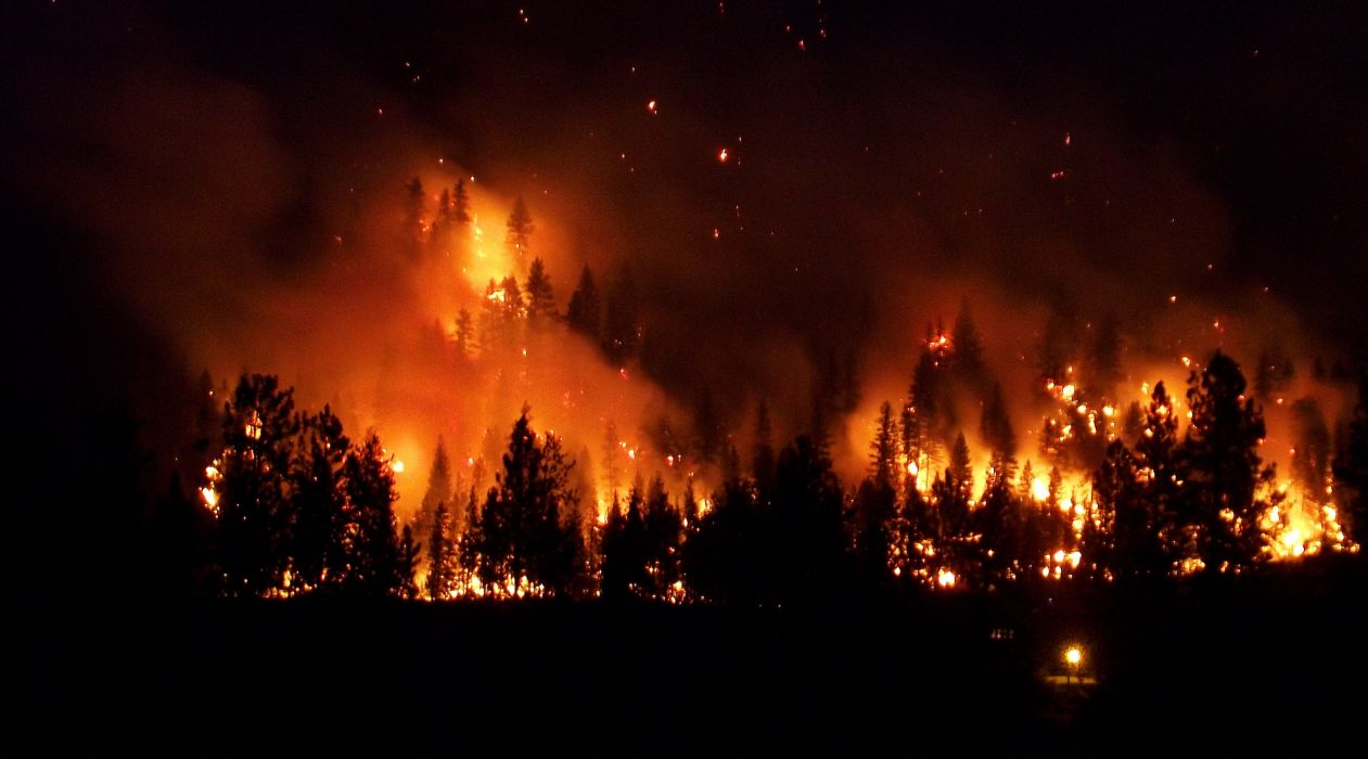 forest fire flames tree disaster apocalyptic (2) wallpaper