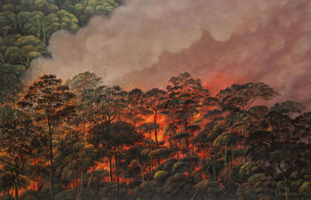 forest fire flames tree disaster apocalyptic (8) wallpaper