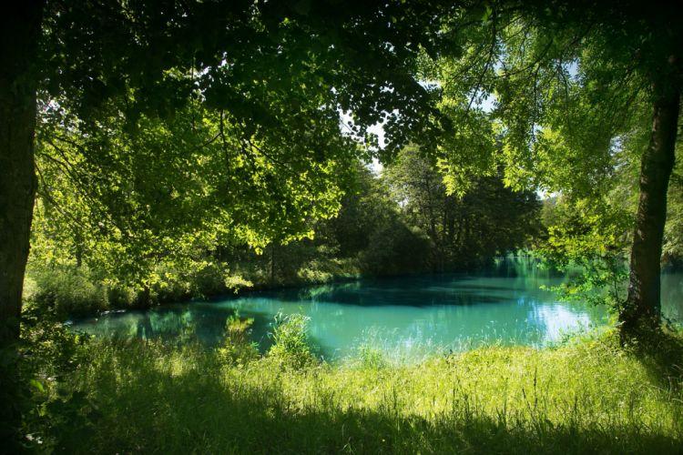 Germany Summer Rivers Bavaria Grass Nature wallpaper