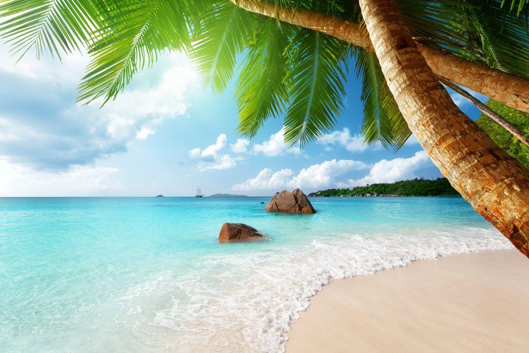 paradise ocean tropical blue palm beach coast sea emerald wallpaper
