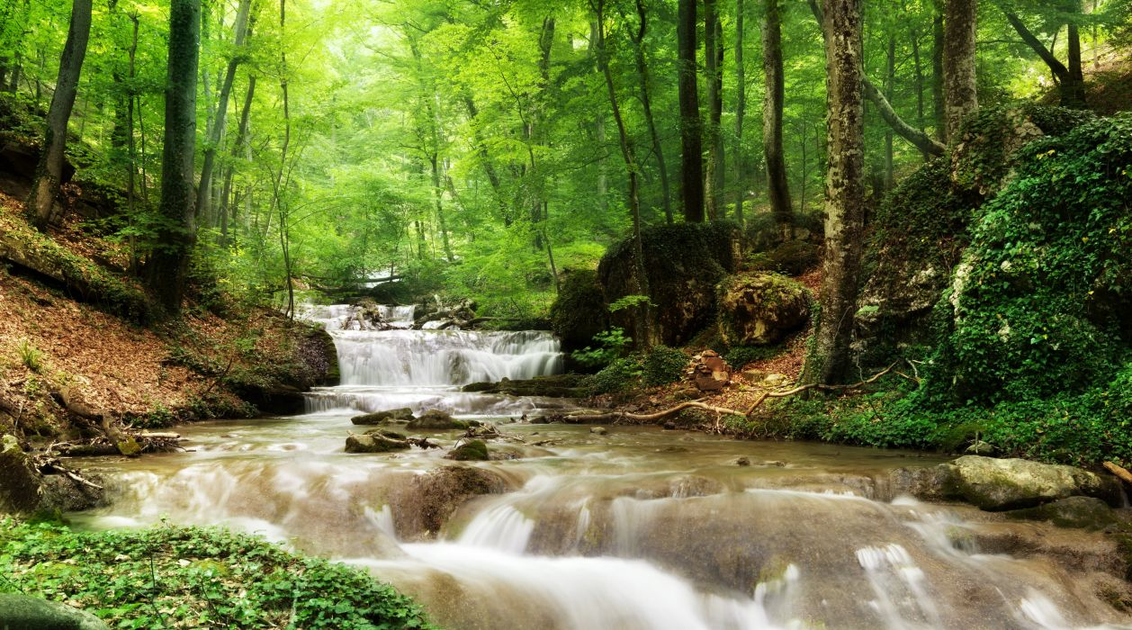 Rivers Waterfalls Forests Trees Nature wallpaper