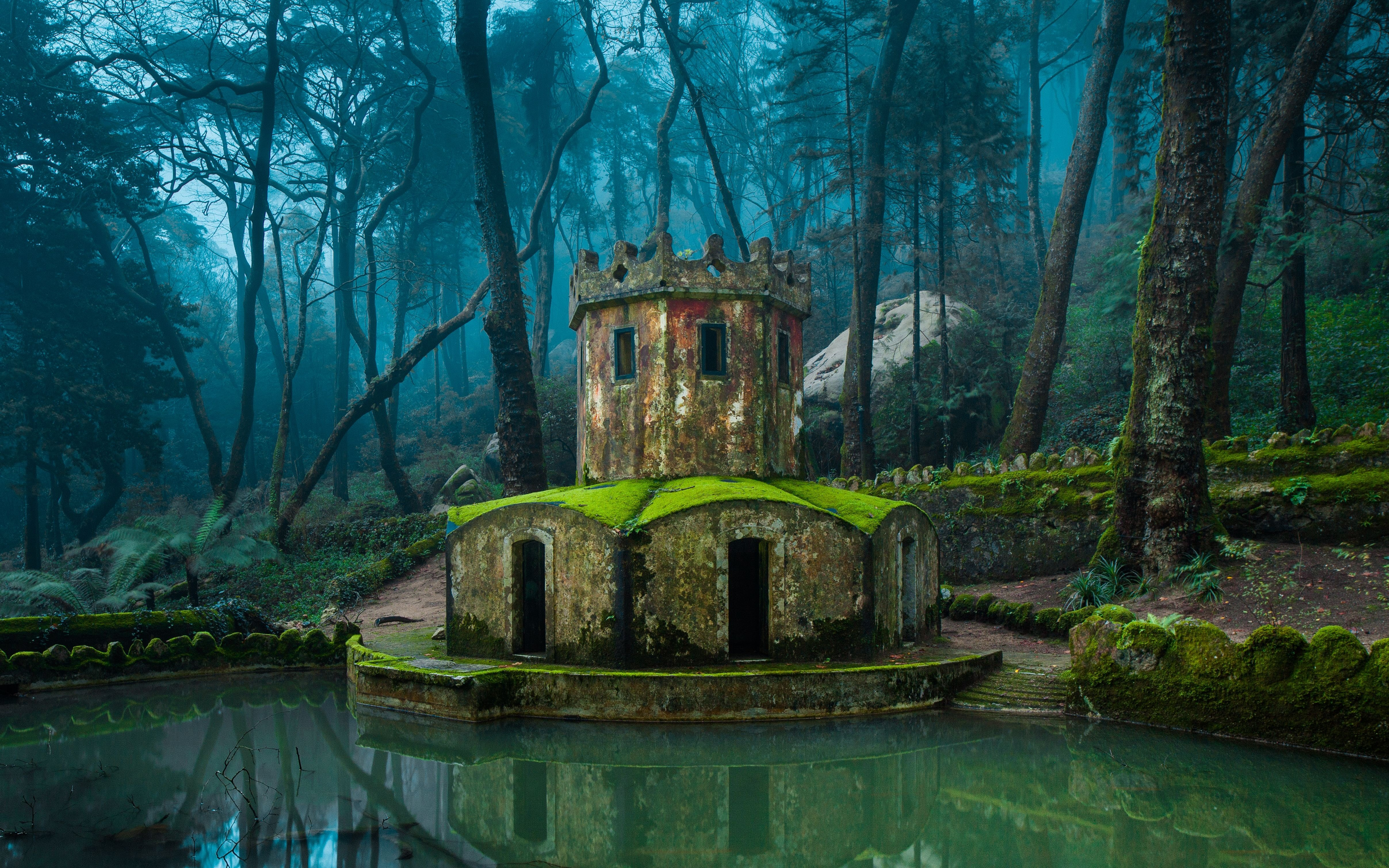 Sintra Portugal Forest Trees Mist Water Nature Landscape D