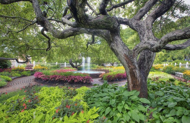 garden park fountain trees landscape wallpaper