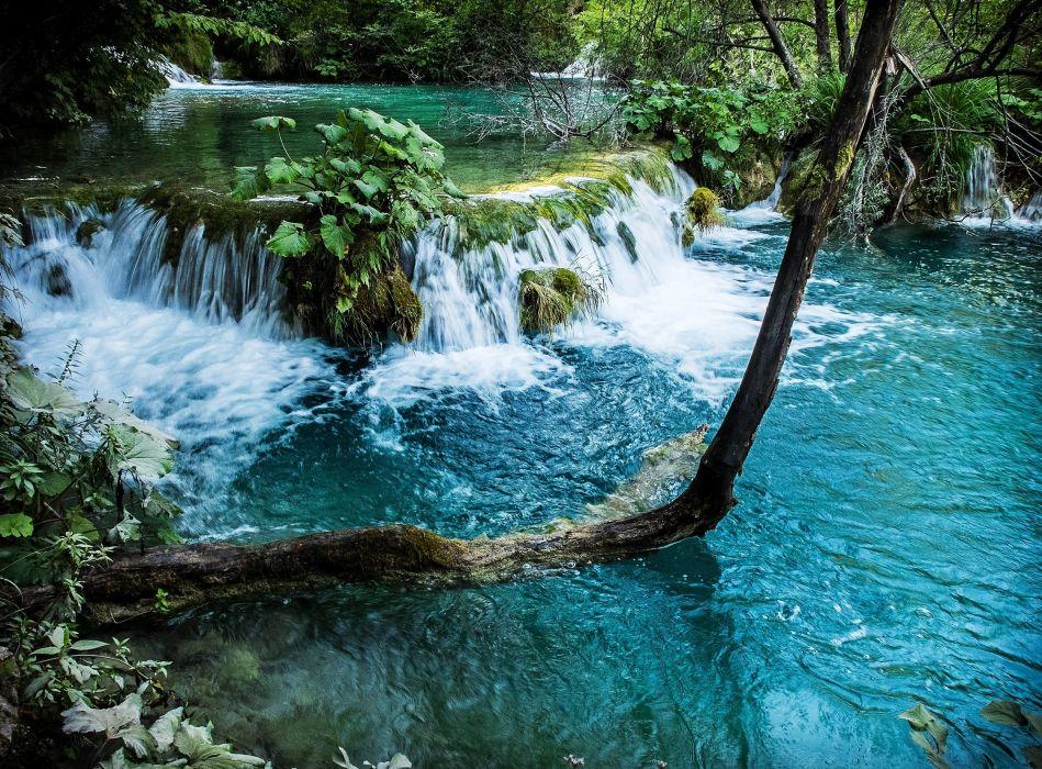 trees river waterfall nature wallpaper