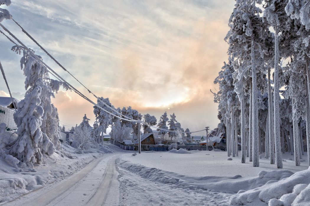 winter snow frost Yugra wallpaper