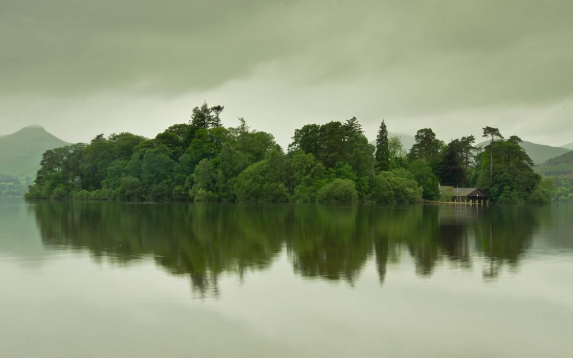 water forest trees overcast lake wallpaper