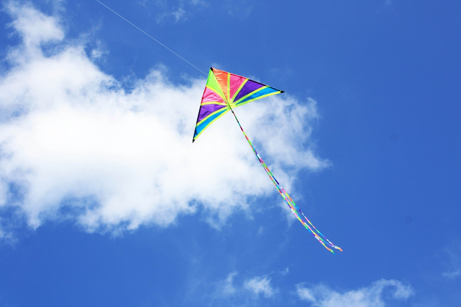 Kite flying bokeh flight fly summer hobby sport sky toy ...