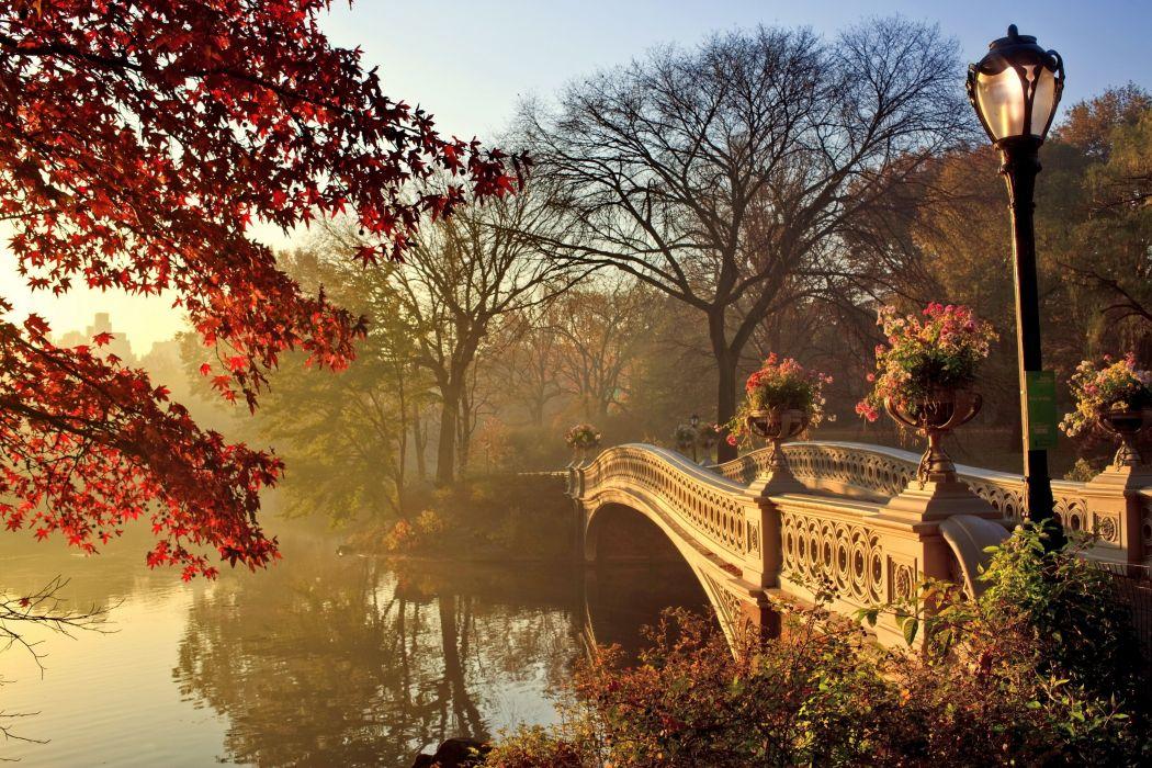 autumn fall park bridge wallpaper