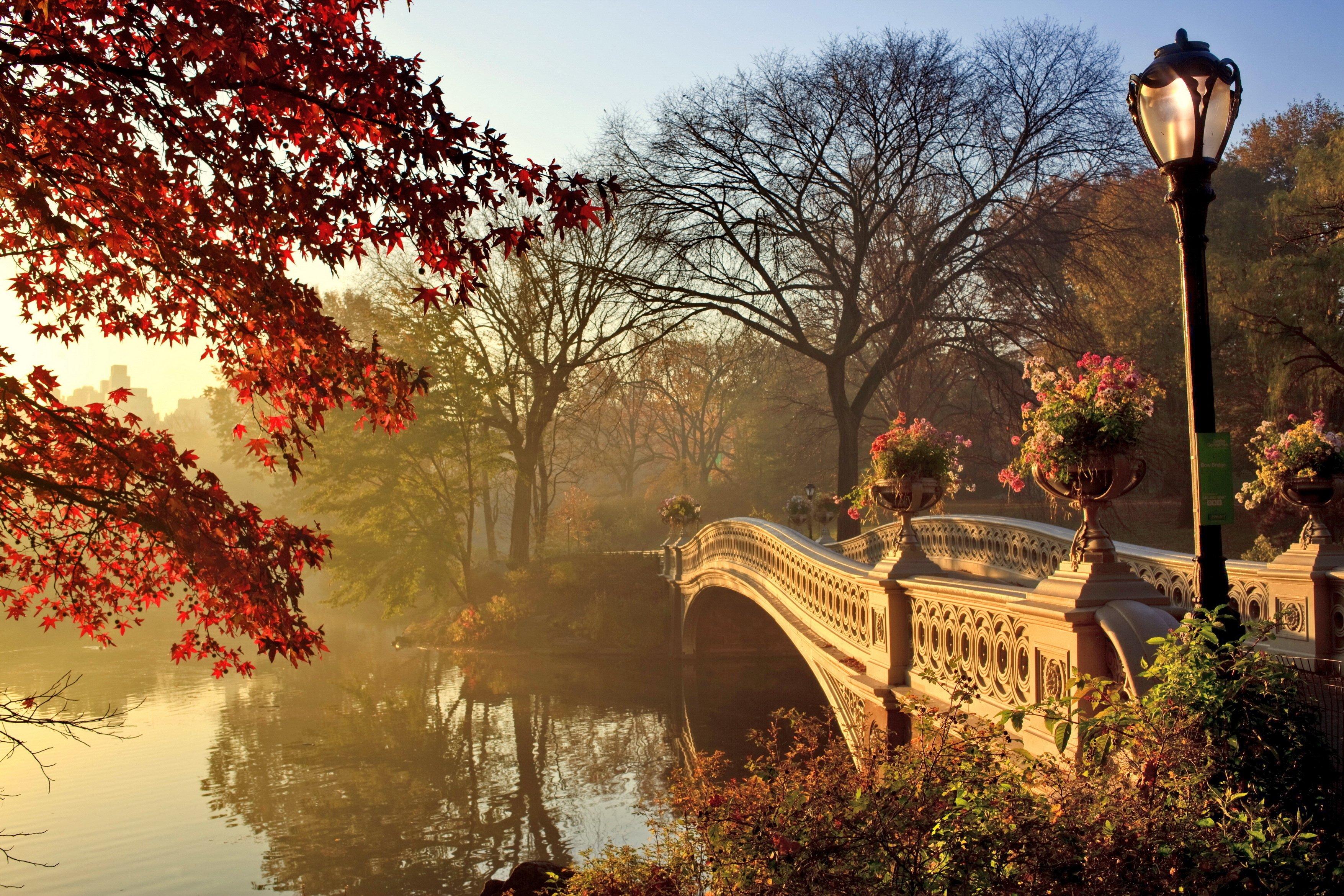 Hd Backgrounds Download >> Autumn fall park bridge wallpaper | 3510x2340 | 424259 | WallpaperUP