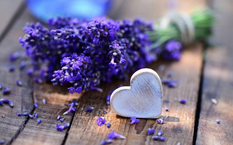 bouquet lavender desk heart love mood wallpaper