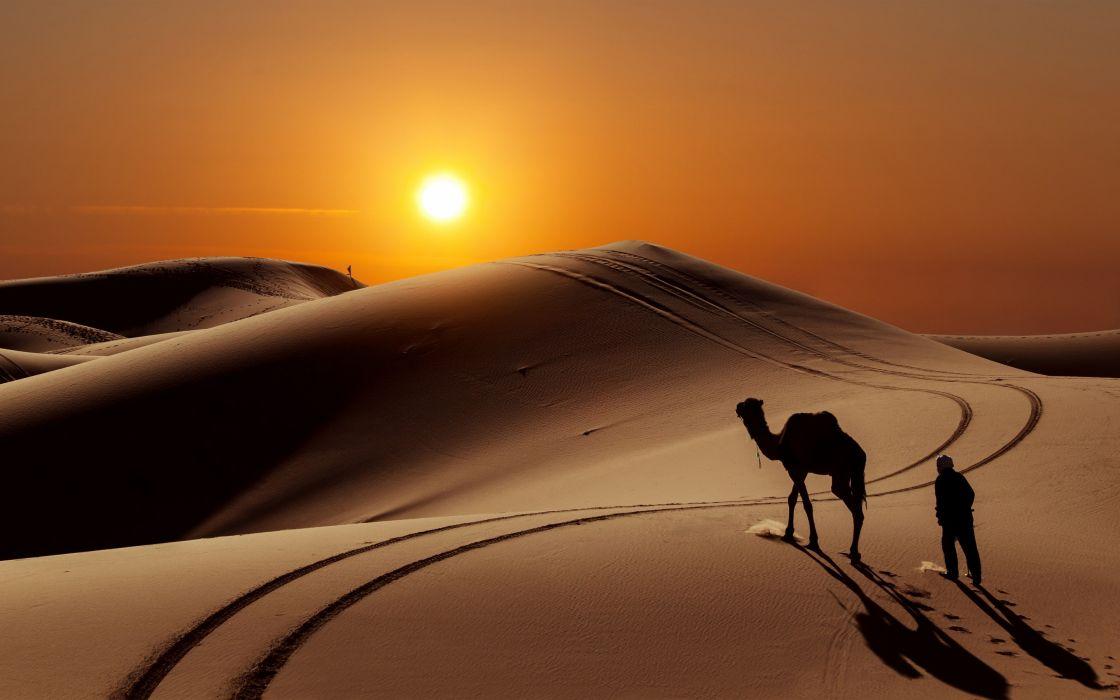 desert sand dunes camels people sun wallpaper