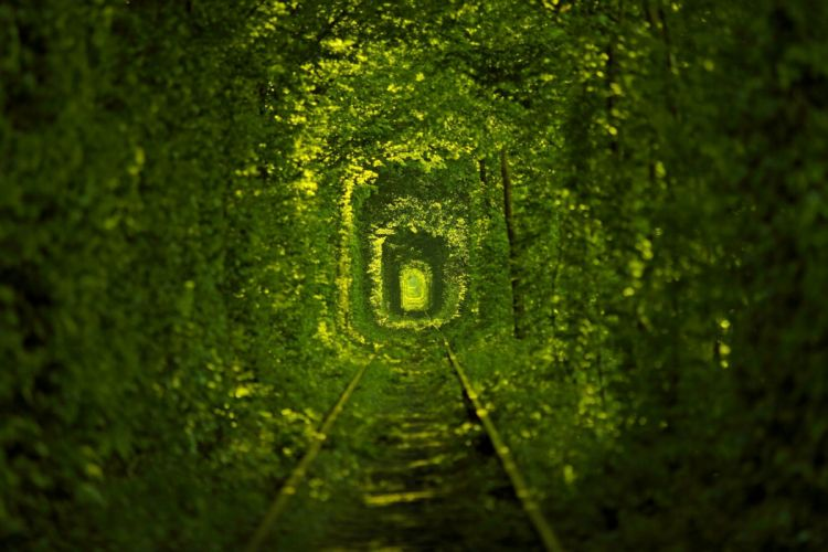nature tramways Ukraine mood train tracks railroad wallpaper