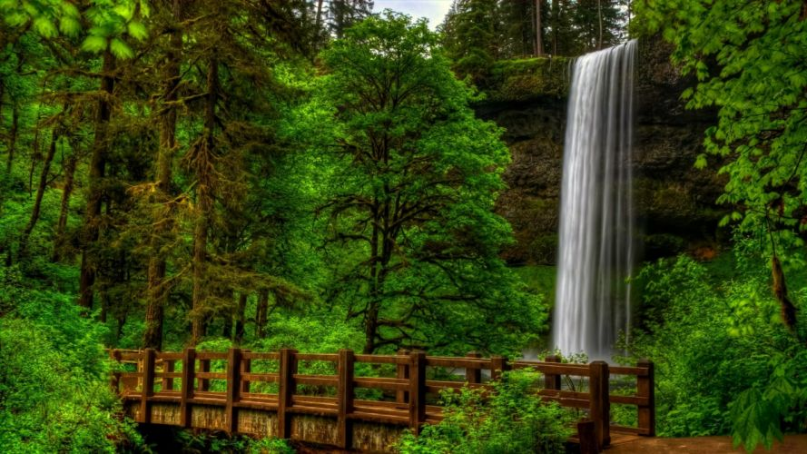 nature view trees forest park bridge waterfall water landscape scenery wallpaper