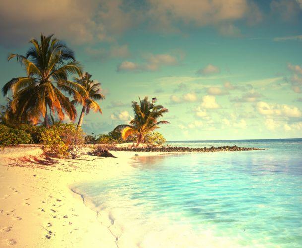 tropical paradise beach palms sea ocean sunshine summer vacation wallpaper