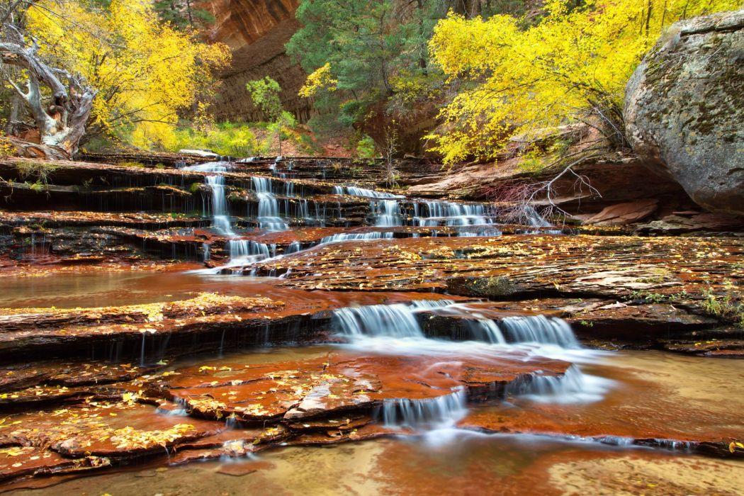 Zion National Park Utah autumn river wallpaper