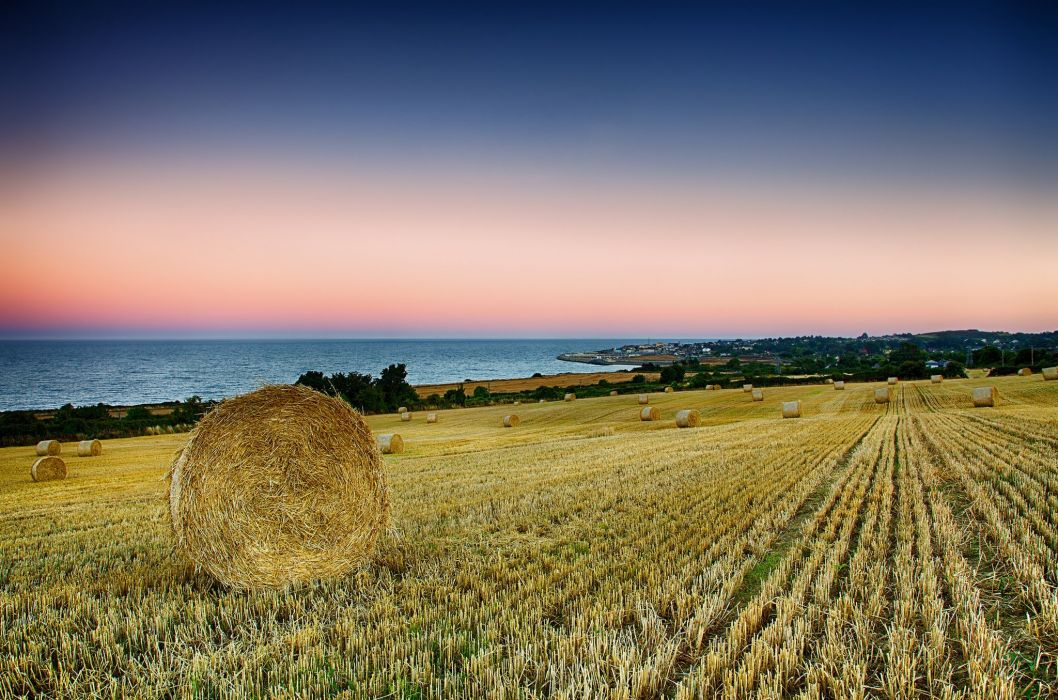 Ireland Greystone sea coast morning field harvest wallpaper