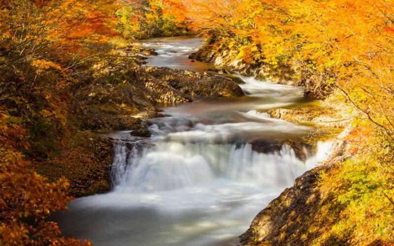 river autumn nature wallpaper