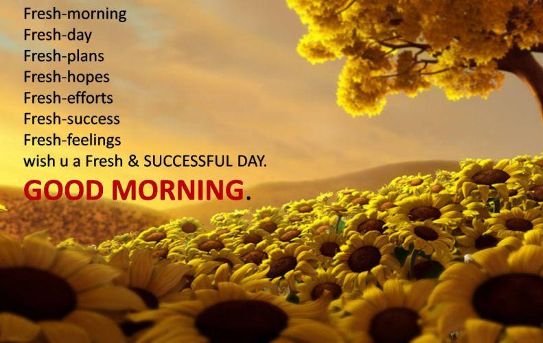 good morning greetings motivational mood wallpaper