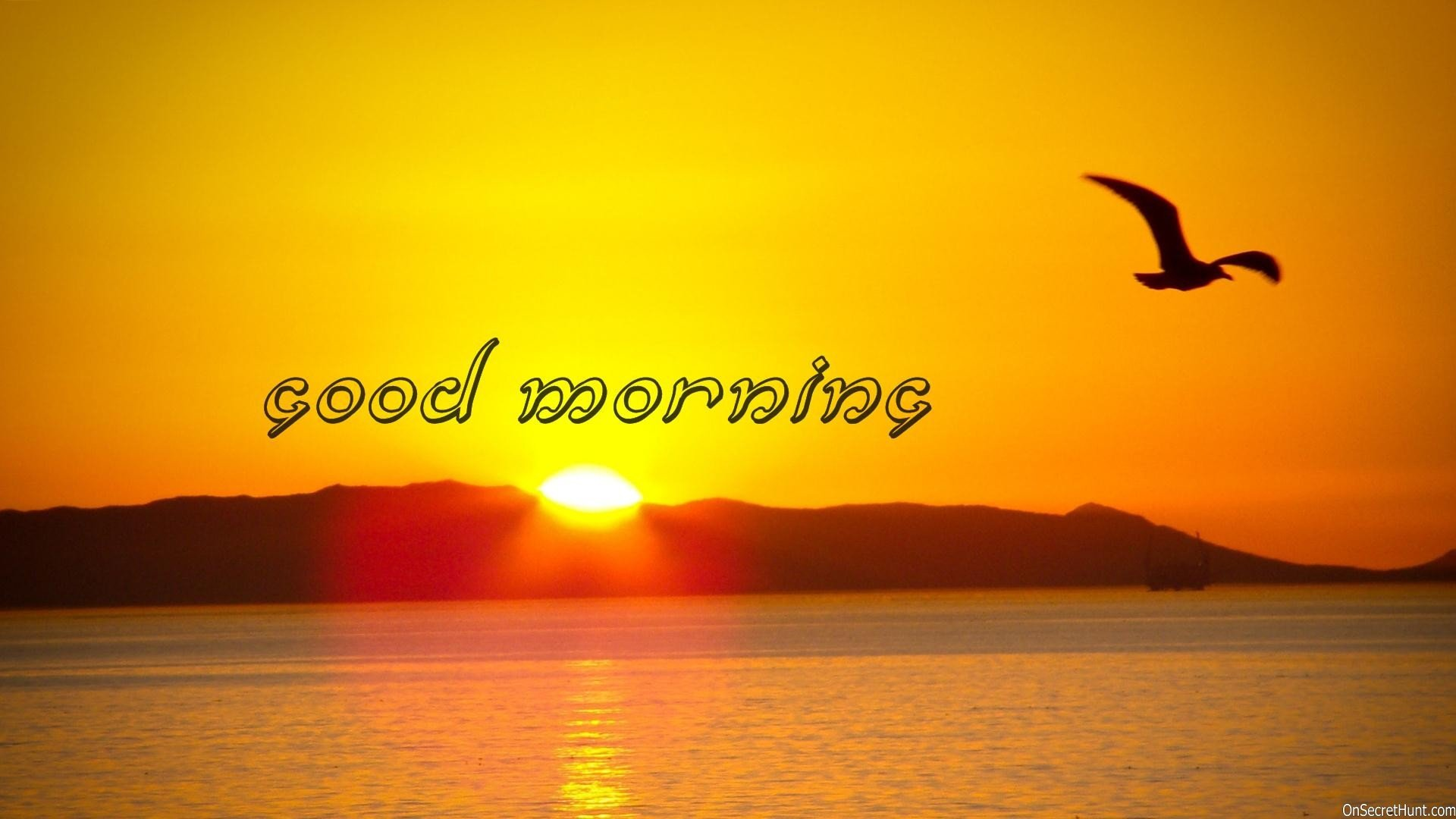 Lovesove Good Morning Wallpaper : Good morning greetings motivational mood wallpaper ...