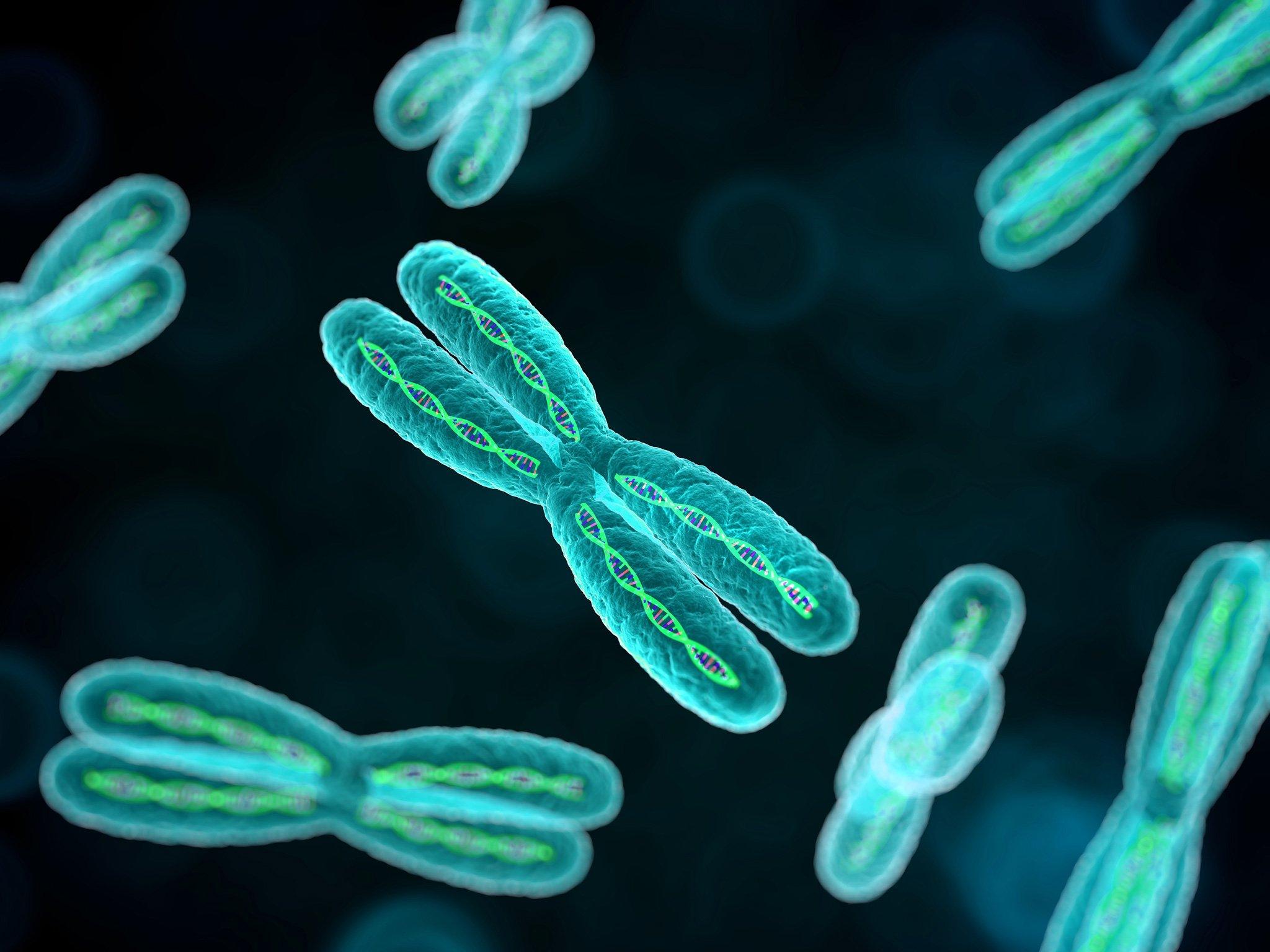 Dna Art Wallpaper Chromosome Dna Pattern Genetic