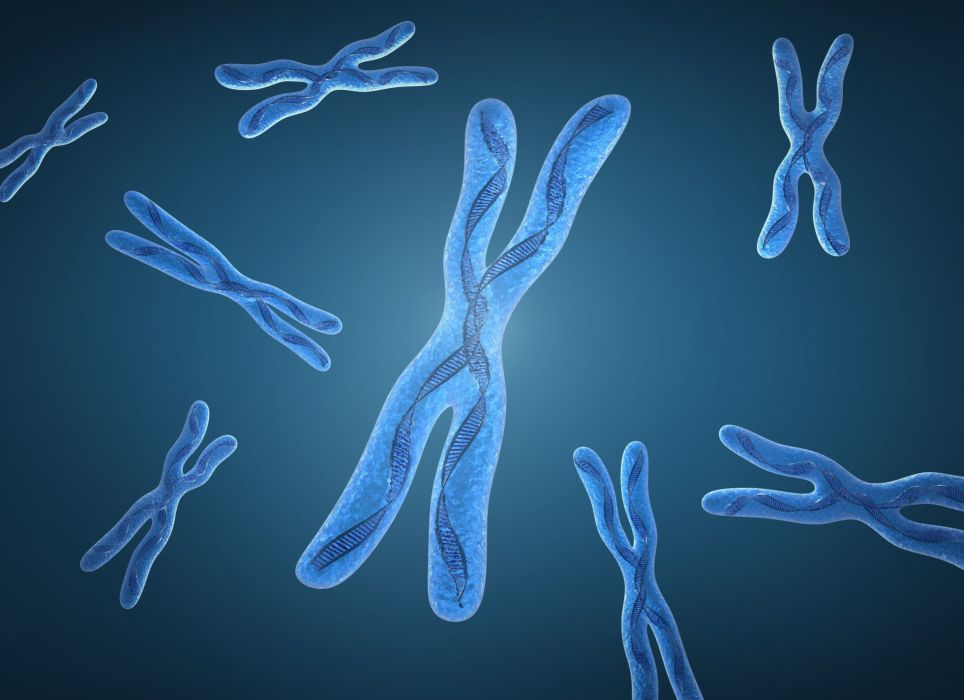 chromosome dna pattern genetic 3-d psychedelic wallpaper
