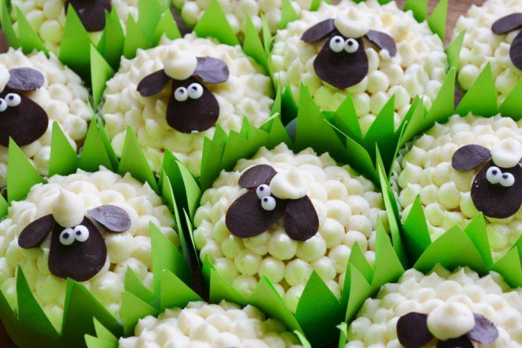 SHEEP dessert cake sweets wallpaper
