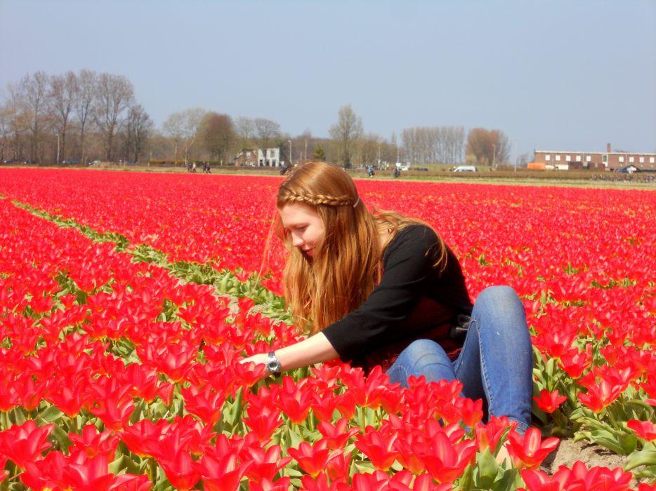 tulip fields tulips field flower flowers redhead babe mood wallpaper
